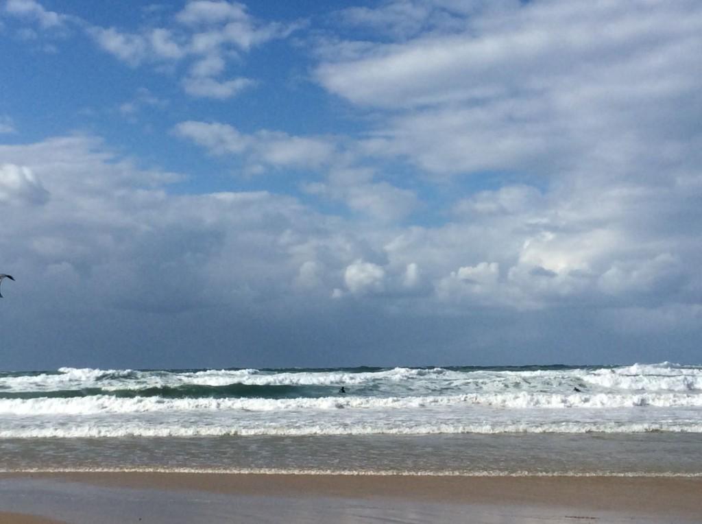 רוח מערבית וים סוער 005