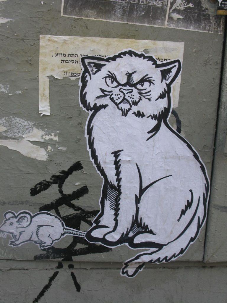 חתול ועכבראווירת רחוב 009